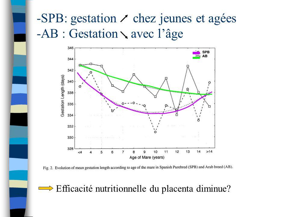 -SPB: gestation chez jeunes et agées -AB : Gestation avec lâge Efficacité nutritionnelle du placenta diminue?