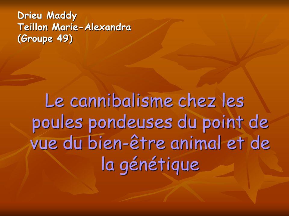Drieu Maddy Teillon Marie-Alexandra (Groupe 49) Le cannibalisme chez les poules pondeuses du point de vue du bien-être animal et de la génétique