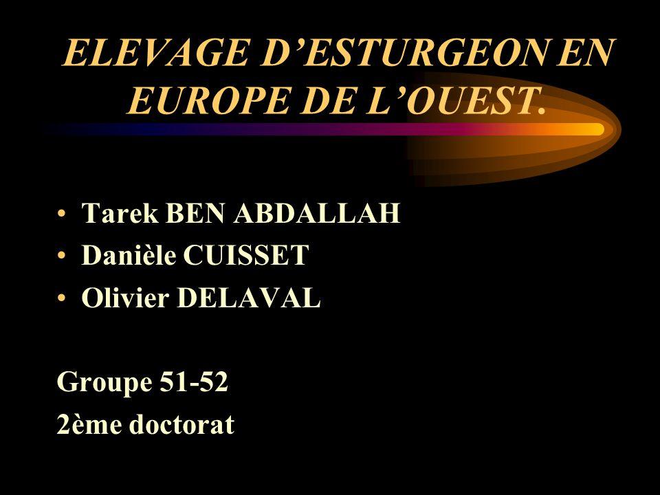 ELEVAGE DESTURGEON EN EUROPE DE LOUEST.