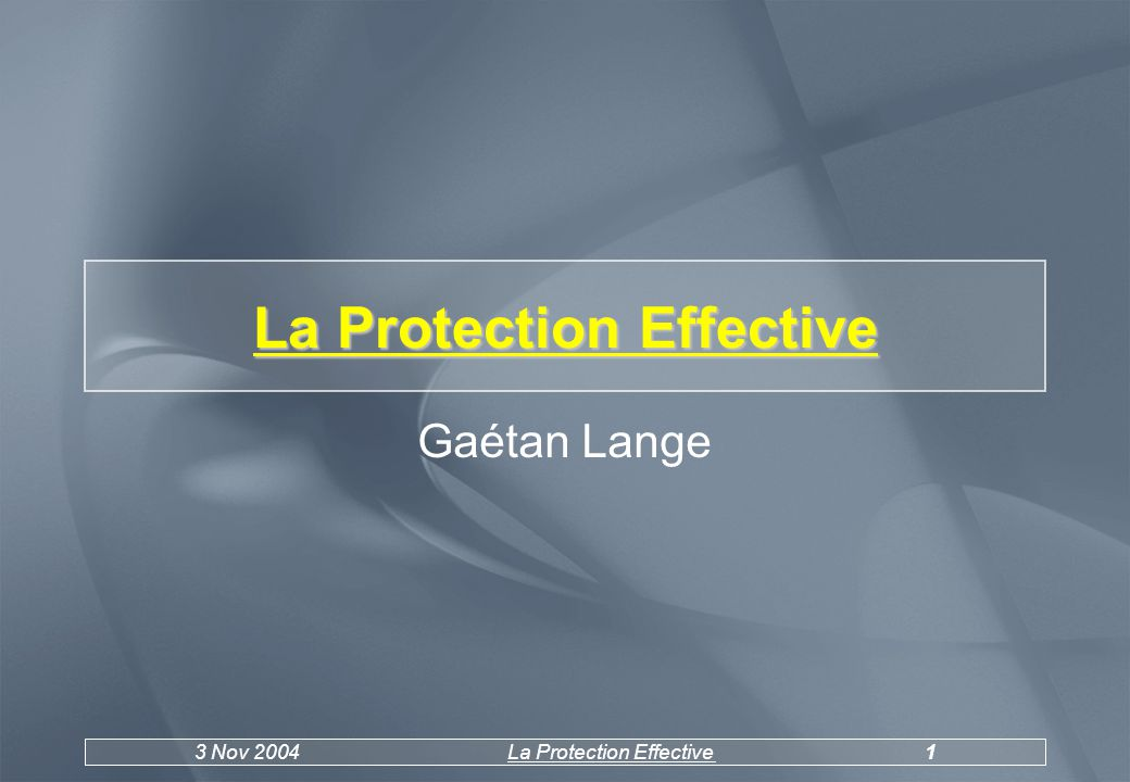 3 Nov 2004La Protection Effective1 La Protection Effective Gaétan Lange