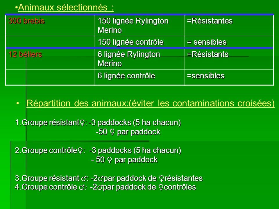 Croisements: F0 : résistants X résistantes contrôles X contrôles F1 : 161 agneaux résistants 159 agneaux contrôles (juillet-août 2004) (juillet-août 2004) 320 agneaux sevrés en novembre 2004 et vermifugés Répartis dans 2 paddocks (résistant versus contrôle) de composition similaire pour assurer le même niveau de nutrition.