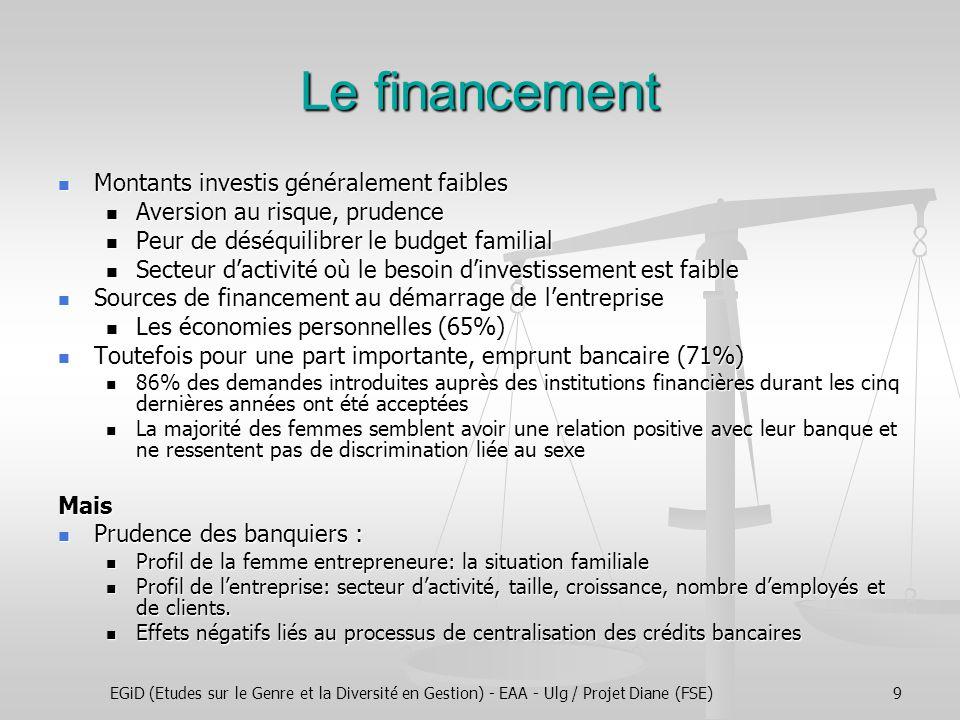 EGiD (Etudes sur le Genre et la Diversité en Gestion) - EAA - Ulg / Projet Diane (FSE)9 Le financement Montants investis généralement faibles Montants