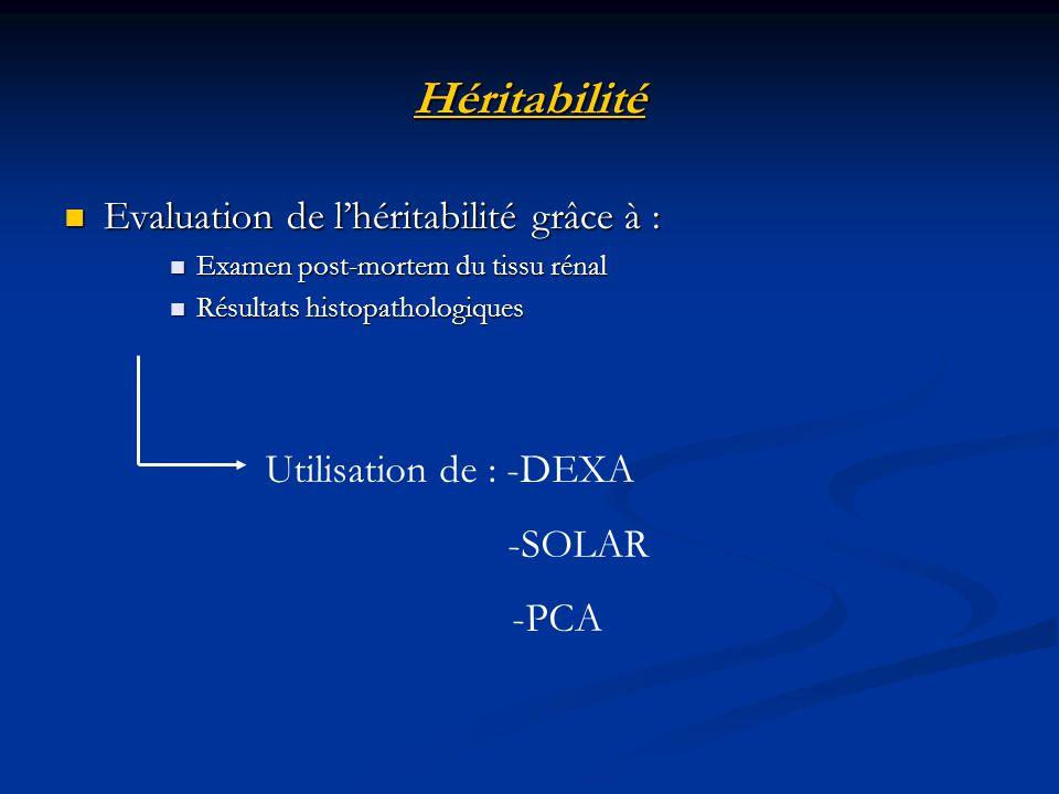 Bibliographie Lawler D.F.et al. The aging feline kidney: a model mortality antagonist.