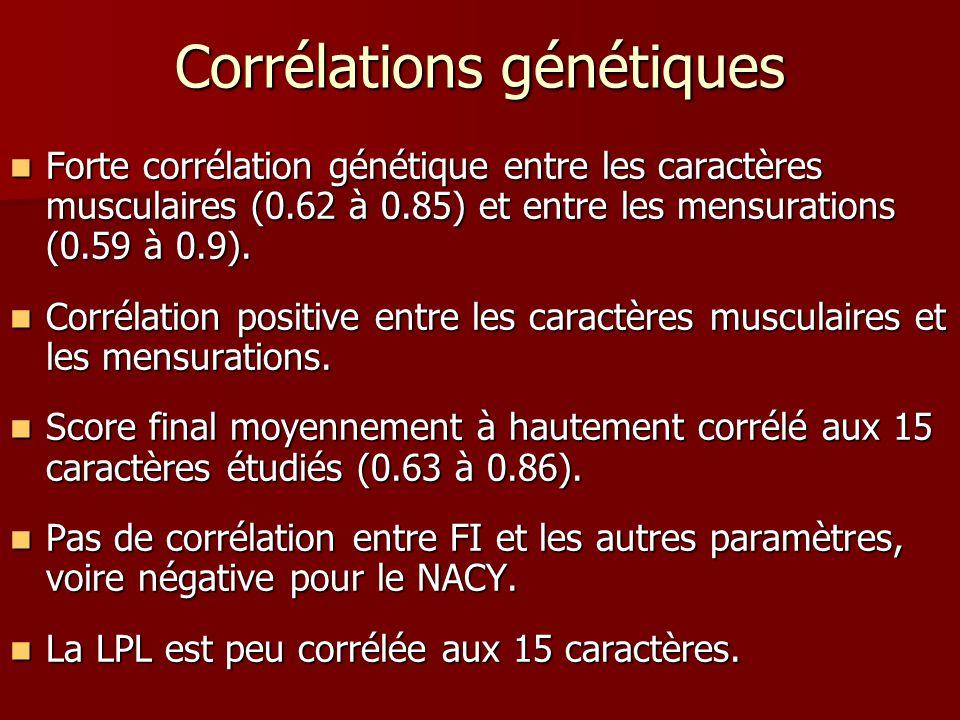 Corrélations génétiques Forte corrélation génétique entre les caractères musculaires (0.62 à 0.85) et entre les mensurations (0.59 à 0.9). Forte corré