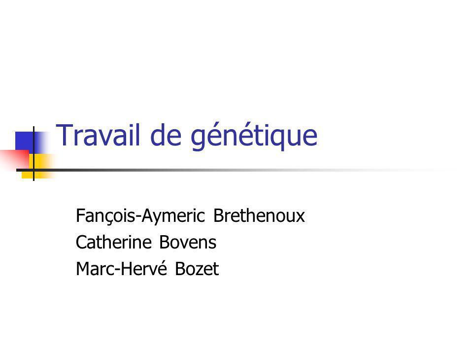 Travail de génétique Fançois-Aymeric Brethenoux Catherine Bovens Marc-Hervé Bozet