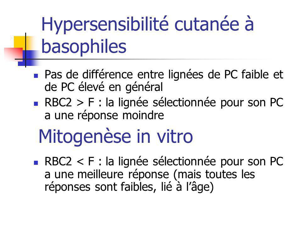 Hypersensibilité cutanée à basophiles Pas de différence entre lignées de PC faible et de PC élevé en général RBC2 > F : la lignée sélectionnée pour so