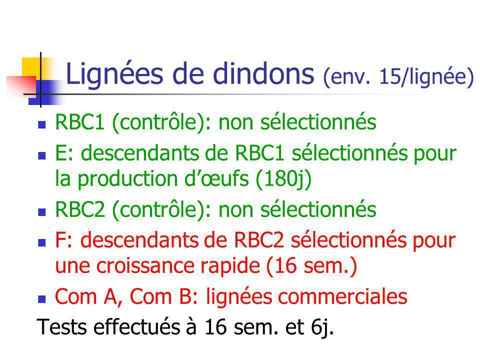 Lignées de dindons (env. 15/lignée) RBC1 (contrôle): non sélectionnés E: descendants de RBC1 sélectionnés pour la production dœufs (180j) RBC2 (contrô
