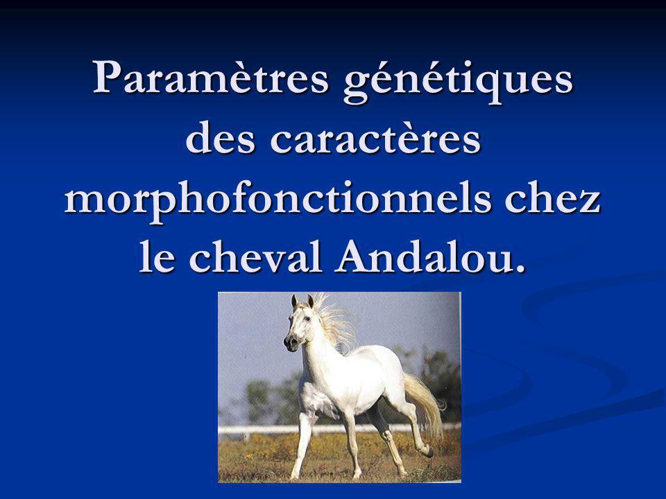 Objectifs : Estimer les paramètres génétiques de 18 caractères morphofonctionnels en vue de lamélioration génétique de lAndalou.