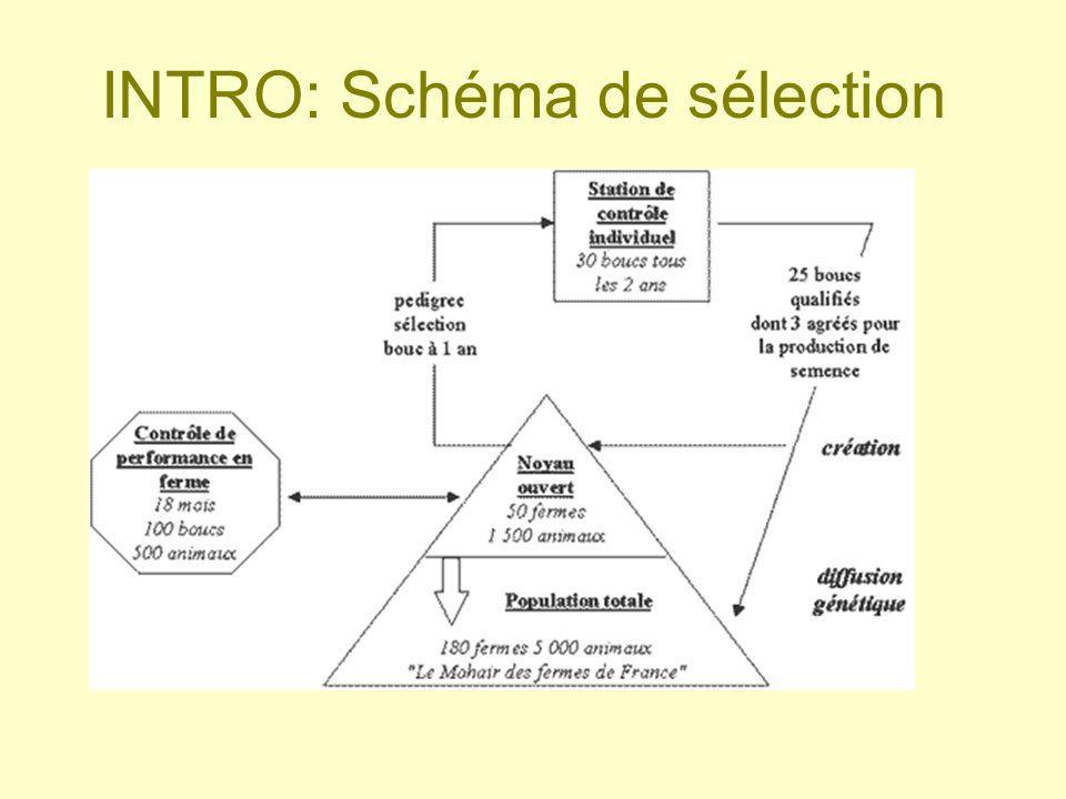 INTRO: Schéma de sélection