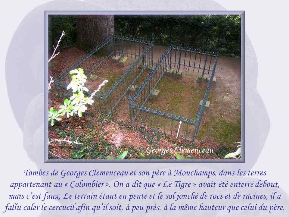 Le bois au « Colombier » où reposent Clemenceau et son père, en contrebas de la déesse. Une minerve casquée érigée par Clemenceau.