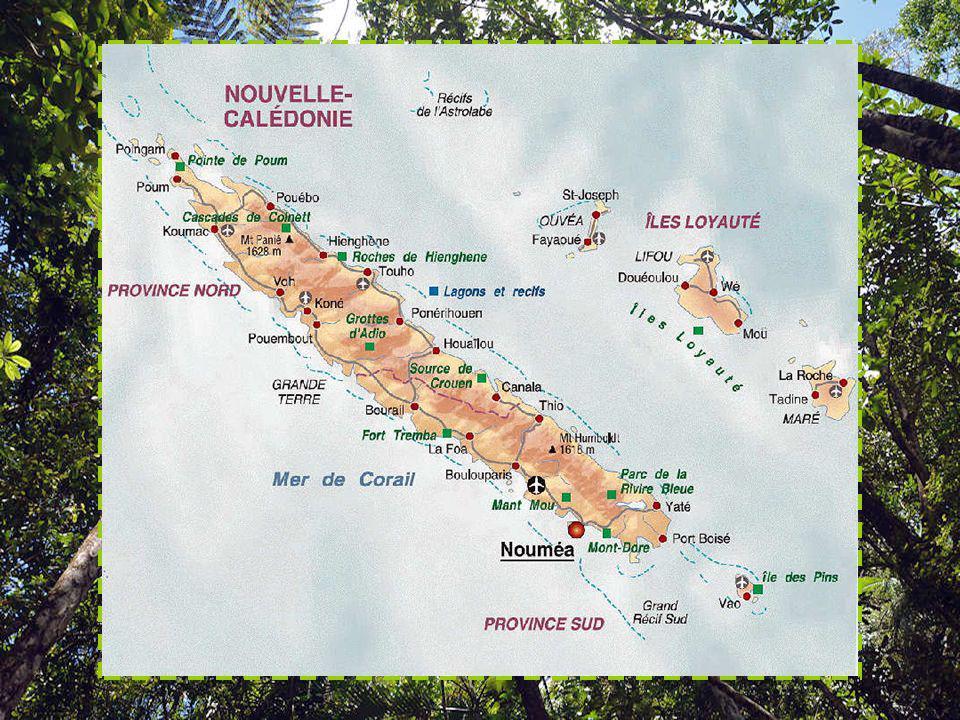 La biodiversité de la Nouvelle-Calédonie est considérée comme la plus importante de la planète. L'île possède un niveau élevé d'endémisme, avec notamm