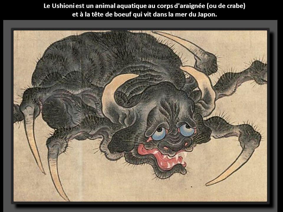 Le Kitsune est l'un des youkaï (créature) les plus populaires du Japon. Il s'agit d'un renard très vieux qui a développé des pouvoirs magiques.