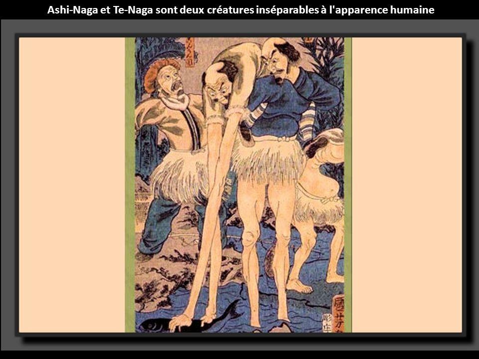 Le Nuppeppo est un amas de chair et de graisse dégageant une forte odeur de cadavre en putréfaction.