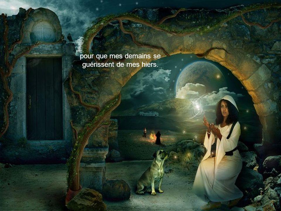 Je rêve d'un monde envahi par la lumière
