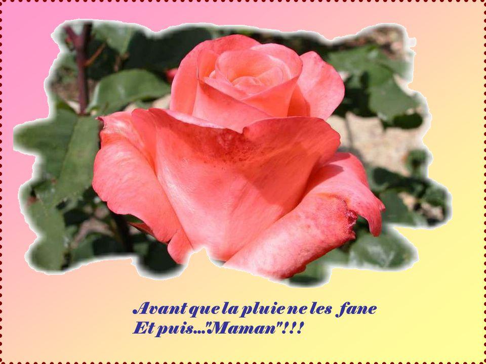 Je vais aller cueillir pour toi Un bouquet des premiers lilas
