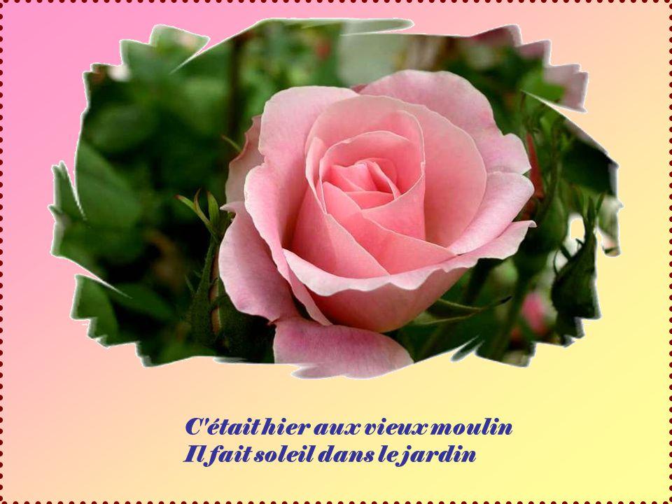 Roses du site « Pasarla Canutas » Chanson interprétée par Roger Whittaker Diaporama de Jacky Questel, ambassadrice de la Paix Jacky.questel@gmail.com http://jackydubearn.over-blog.com/