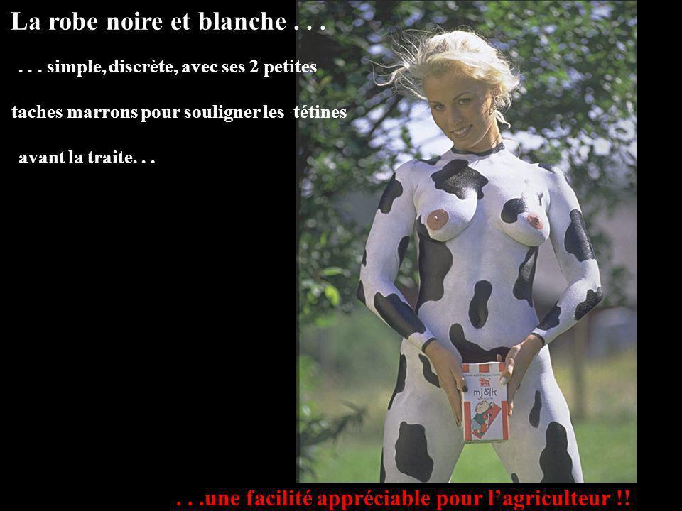 ...voici enfin la race qui va donner lenvie à nos agriculteurs: LA SAVOYARDE Après la Limousine, la Charolaise, la Saler, lAubrac ou la Blonde dAquita
