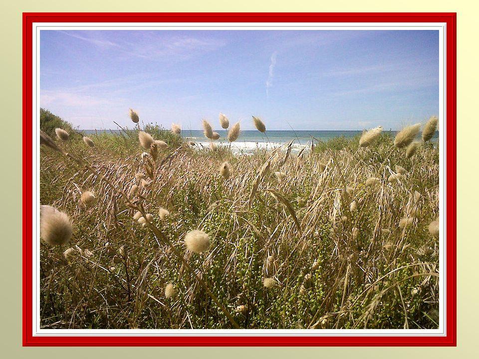 Il y a plus de choses naufragées au fond dune âme quau fond de la mer.