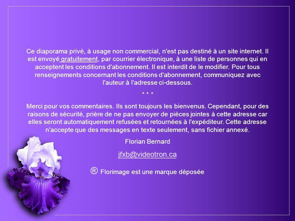 Je n'aurai pas le temps – Paroles Pierre Delanoë Musique Michel Fugain – Petits Chanteurs du Mistral Création Florian Bernard Tous droits réservés 200