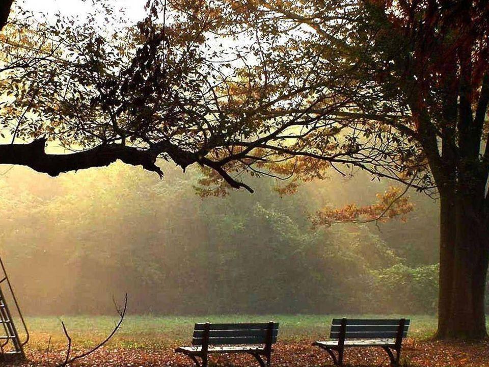 Un mot de trop peut briser une amitié La langue telle une faux, Coupe un lien sans pitié.