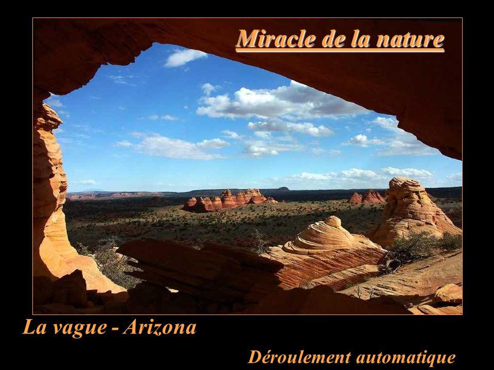 Miracle de la nature La vague - Arizona Déroulement automatique