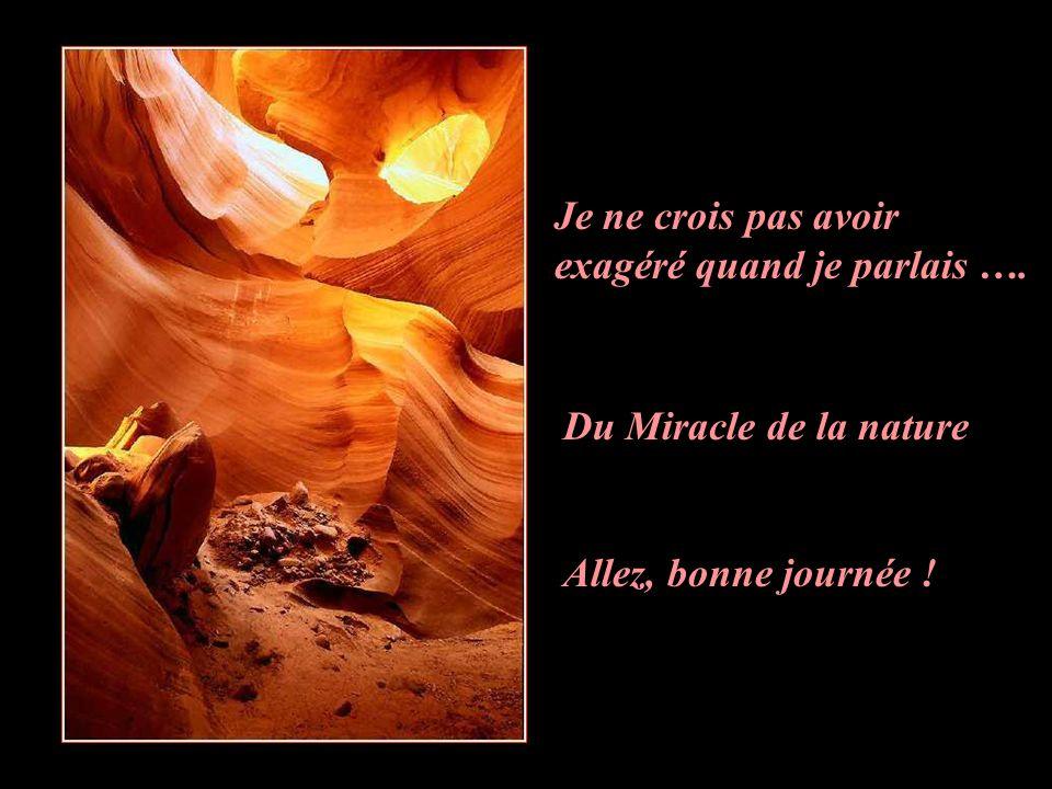 Je ne crois pas avoir exagéré quand je parlais …. Du Miracle de la nature Allez, bonne journée !