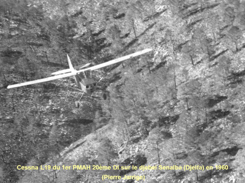 Cessna L19 du 1er PMAH 20ème DI sur le djebel Senalba (Djelfa) en 1960 (Pierre Jarrige)