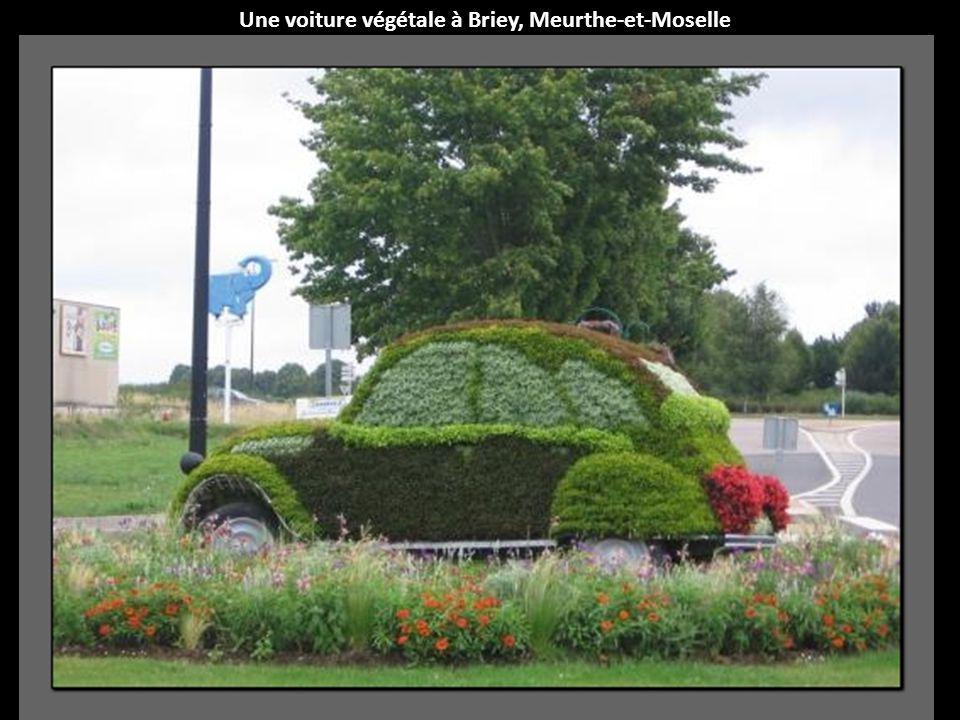 Une voiture végétale à Briey, Meurthe-et-Moselle
