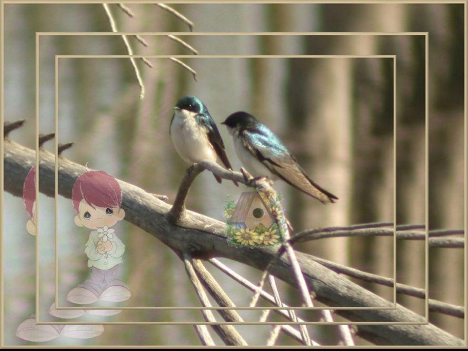 Dans le jardin de mes pensées, Il y a un nid dhirondelles et une enseigne en langage doiseaux accrochée à un arbre par un gamin de cinq ans doué dune