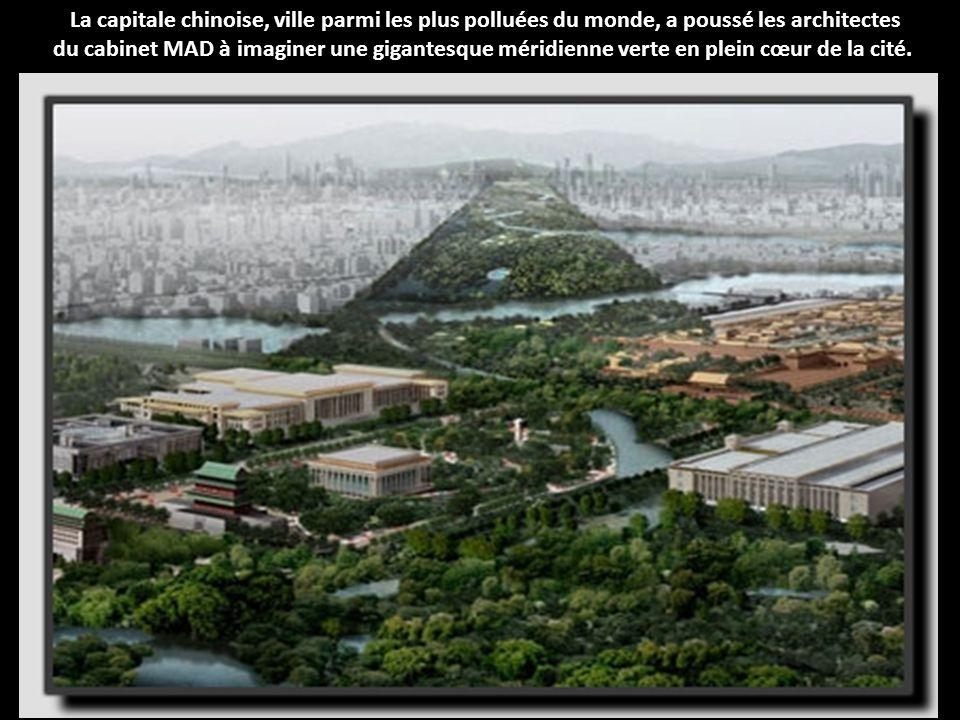 Deux architectes tchèques ont à cœur de nettoyer l'air des villes. Pour ce faire, ils proposent une structure enroulée, recouverte d'algues et d'épong