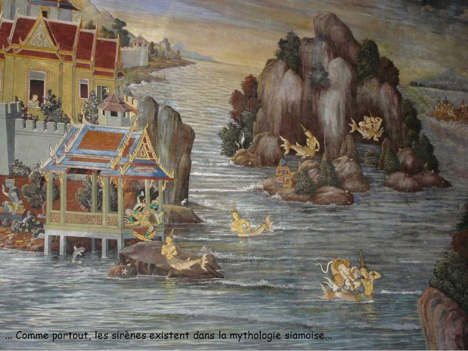 ... Comme partout, les sirènes existent dans la mythologie siamoise...