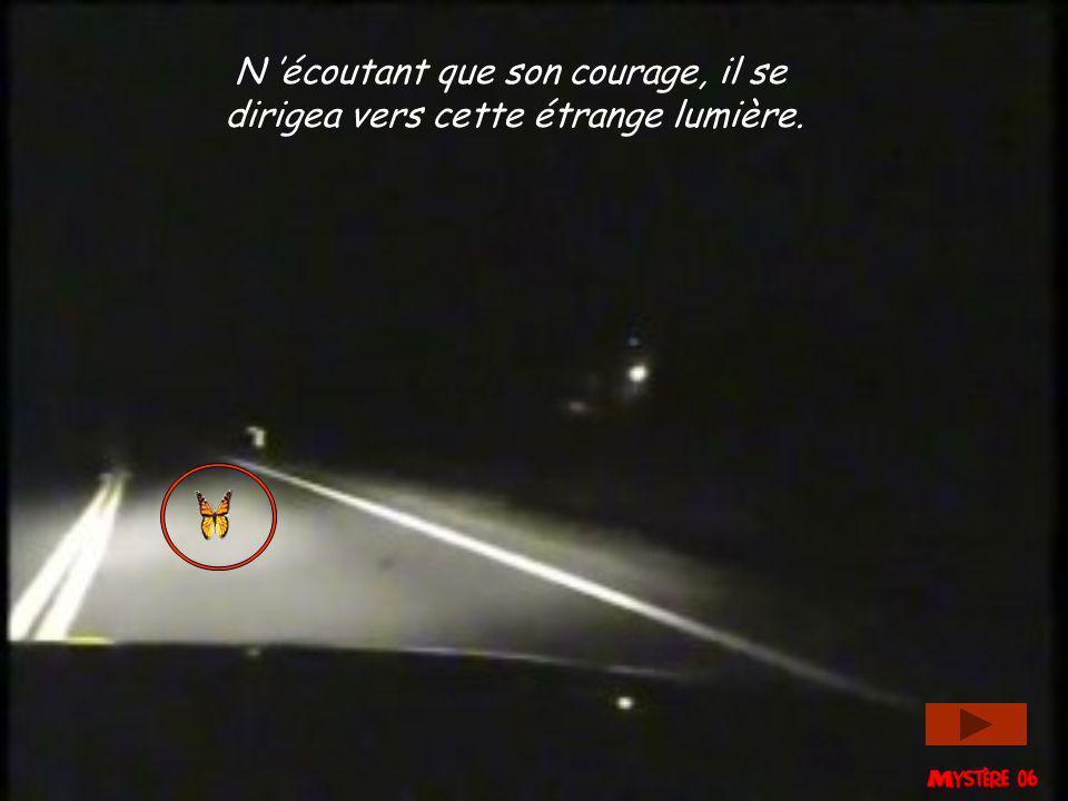 La légende raconte que le papillon au bord de la route, fut attiré par une lumière intense.
