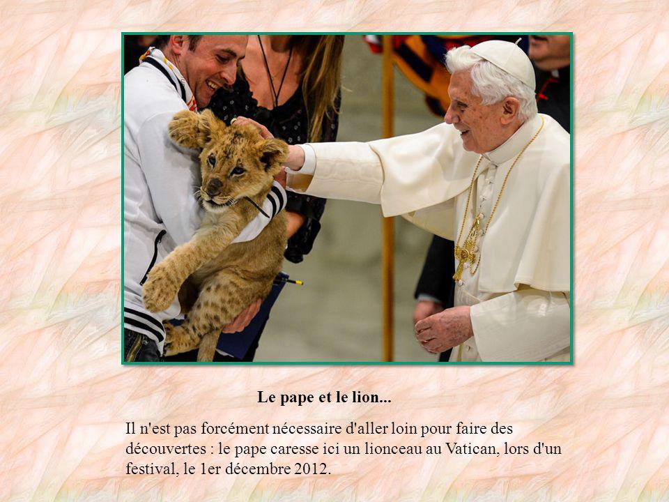 Un pontificat de voyages Depuis son élection en 2005, Benoît XVI s est rendu dans de nombreux pays, en Europe (Allemagne, France, Autriche, Royaume-Uni, Espagne, etc., mais aussi sur d autres continents.