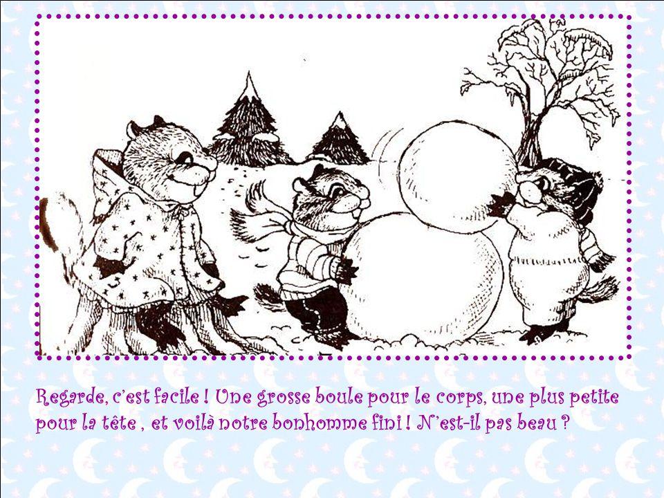 Et maintenant,si nous faisions un beau bonhomme de neige ? - Oh non ! Dit Froufrou. Je ne sais pas faire un bonhomme de neige, moi !