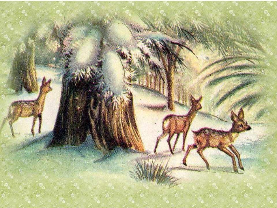 Images du site Pré de Lune Texte : Max Bolliger Texte trouvé sur HISTOIRES À FAIRE RÊVER http://contesarever.wordpress.com/ Musique : Celtic Christmas : Christmas Evehttp://contesarever.wordpress.com/ Diaporama de Jacky Questel, ambassadrice de la Paix Jacky.questel@gmail.com http://jackydubearn.over-blog.com/ http://www.jackydubearn.fr/