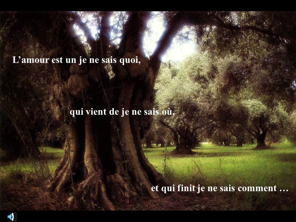 Lamour, cest quand on nobtient pas tout de suite ce quon désire….