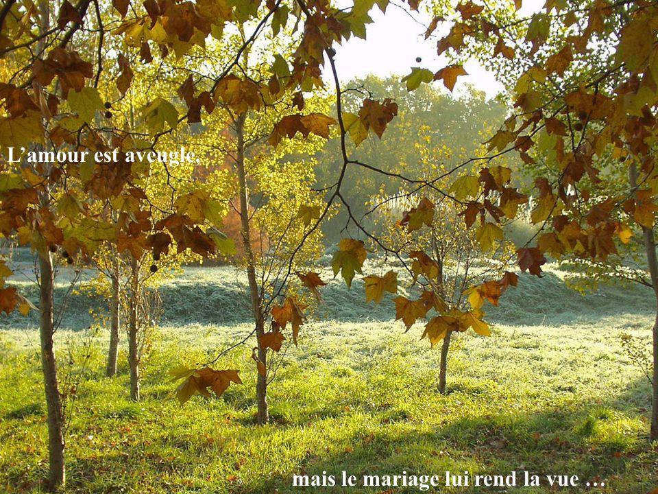 Lamour est aveugle, mais le mariage lui rend la vue …