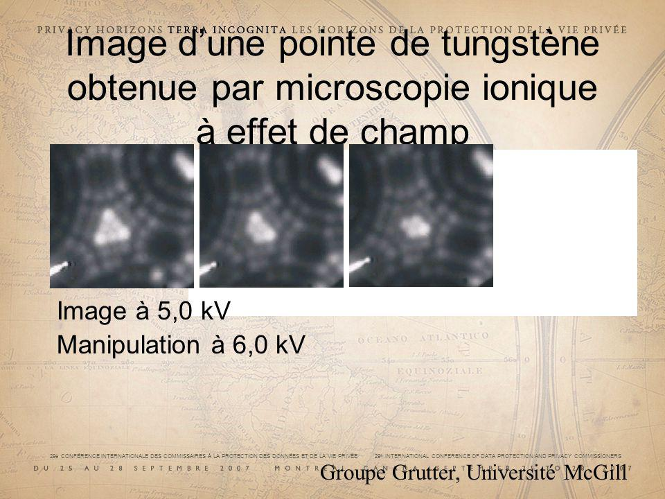 29e CONFÉRENCE INTERNATIONALE DES COMMISSAIRES À LA PROTECTION DES DONNÉES ET DE LA VIE PRIVÉE 29 th INTERNATIONAL CONFERENCE OF DATA PROTECTION AND PRIVACY COMMISSIONERS Image dune pointe de tungstène obtenue par microscopie ionique à effet de champ Image à 5,0 kV Manipulation à 6,0 kV Groupe Grutter, Université McGill