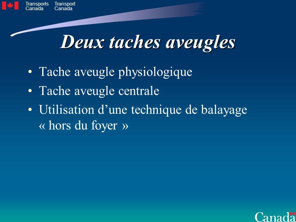 Transports Canada Transport Canada Deux taches aveugles Tache aveugle physiologique Tache aveugle centrale Utilisation dune technique de balayage « hors du foyer »