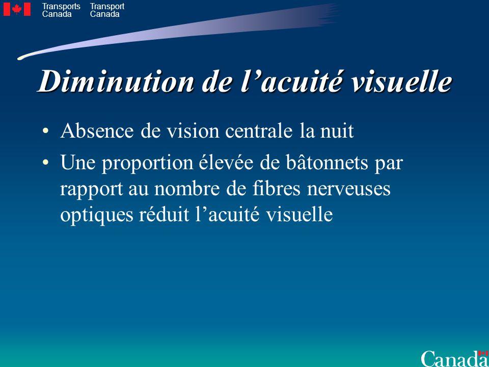 Transports Canada Transport Canada Diminution de lacuité visuelle Absence de vision centrale la nuit Une proportion élevée de bâtonnets par rapport au nombre de fibres nerveuses optiques réduit lacuité visuelle
