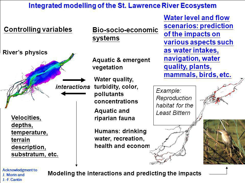 WWRP Integrated modelling of the St.