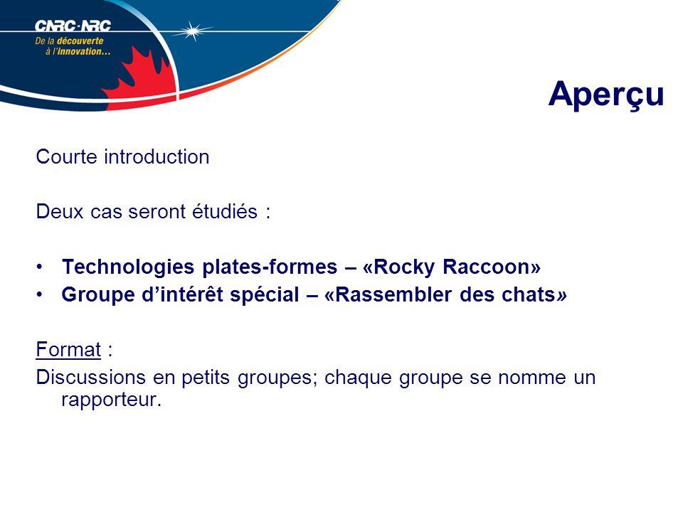Aperçu Courte introduction Deux cas seront étudiés : Technologies plates-formes – «Rocky Raccoon» Groupe dintérêt spécial – «Rassembler des chats» Format : Discussions en petits groupes; chaque groupe se nomme un rapporteur.