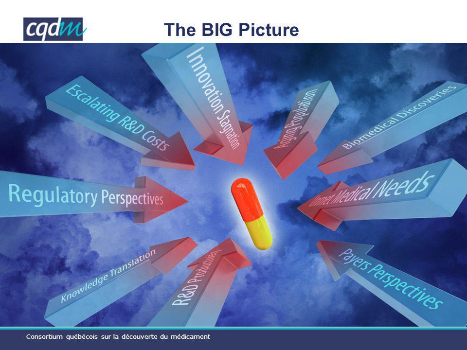 Consortium québécois sur la découverte du médicament The BIG Picture