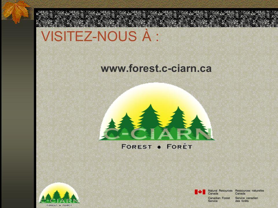 VISITEZ-NOUS À : www.forest.c-ciarn.ca