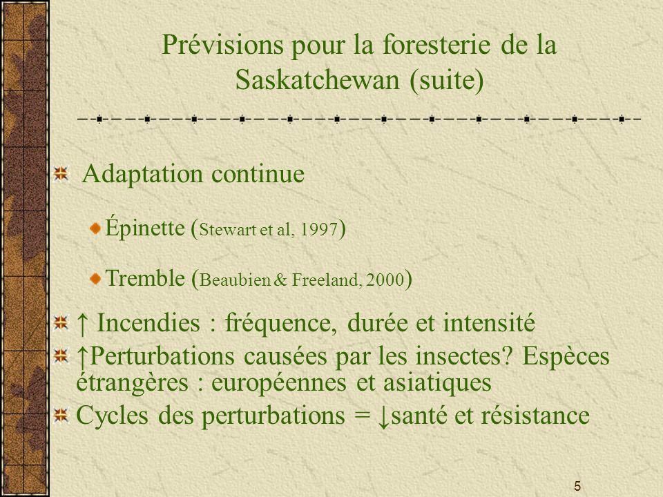 6 Sécheresse de 1988 – Accroissement du volume, mortalité des semis, perturbations (incendies, livrée, tordeuse de bourgeons de lépinette) Risque dassèchement des tourbières et des terres humides ( CO 2, CH 4 ) habitat faunique santé des écosystèmes 1987-1988 – Terres humides 44 %, 16 %population de canards nicheurs, 5 - 10 fois mortalité chez la sauvagine (APAP, 2002) Prévisions pour la foresterie de la Saskatchewan