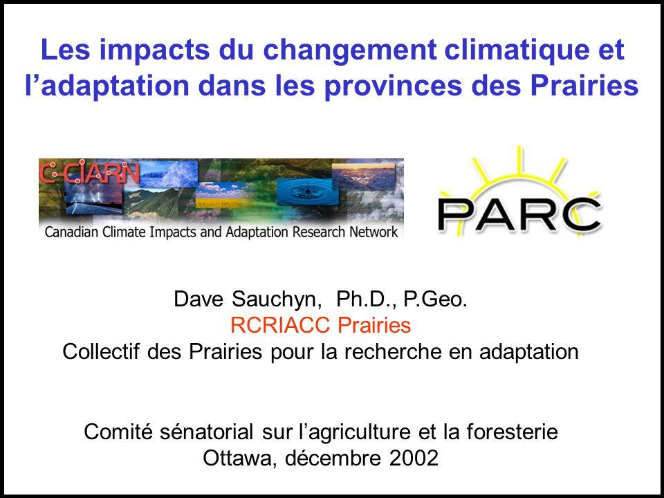Dave Sauchyn, Ph.D., P.Geo.