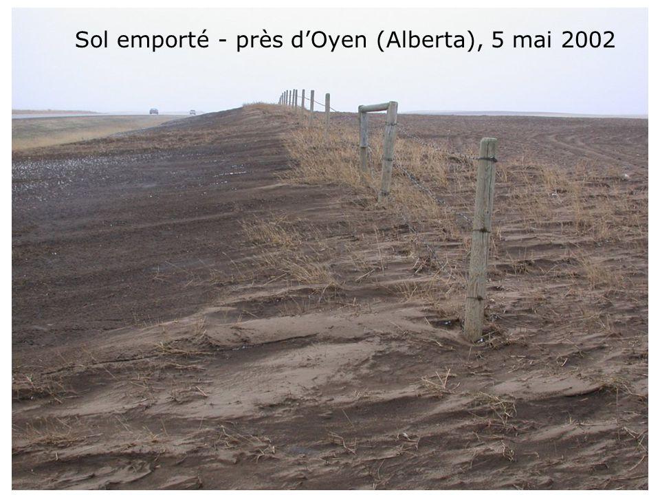Sol emporté - près dOyen (Alberta), 5 mai 2002