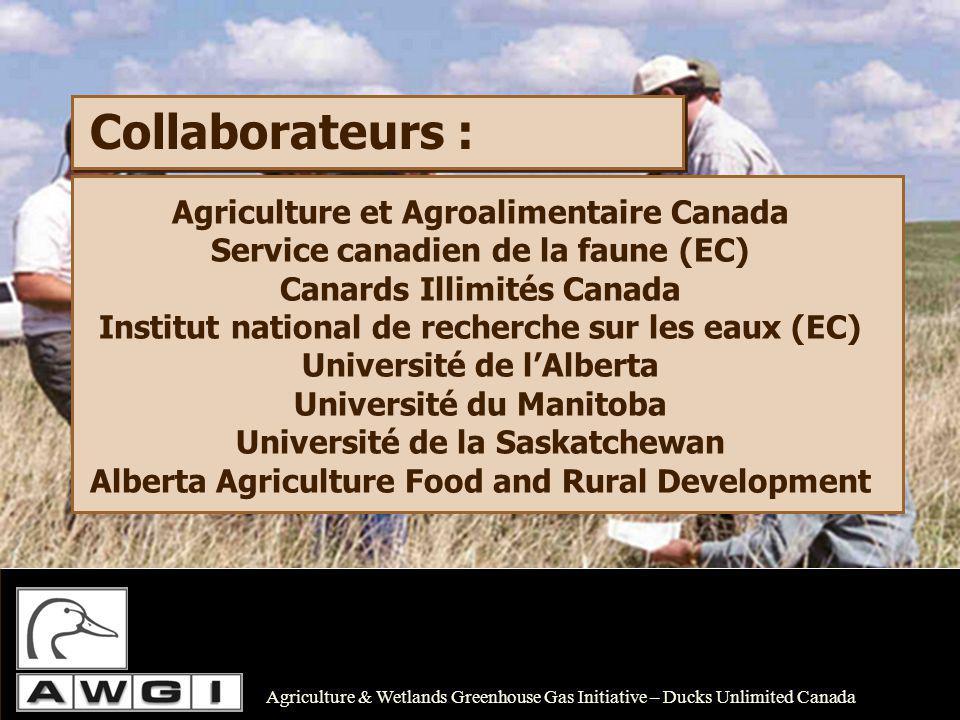 Financement : Objectif de financement annuel 750 000 $ Budget annuel total 1 340 000 $ Universités, subventions du CRSNG Partenaires de lindustrie forestière (Alberta-Pacifique) Fondation BIOCAP.