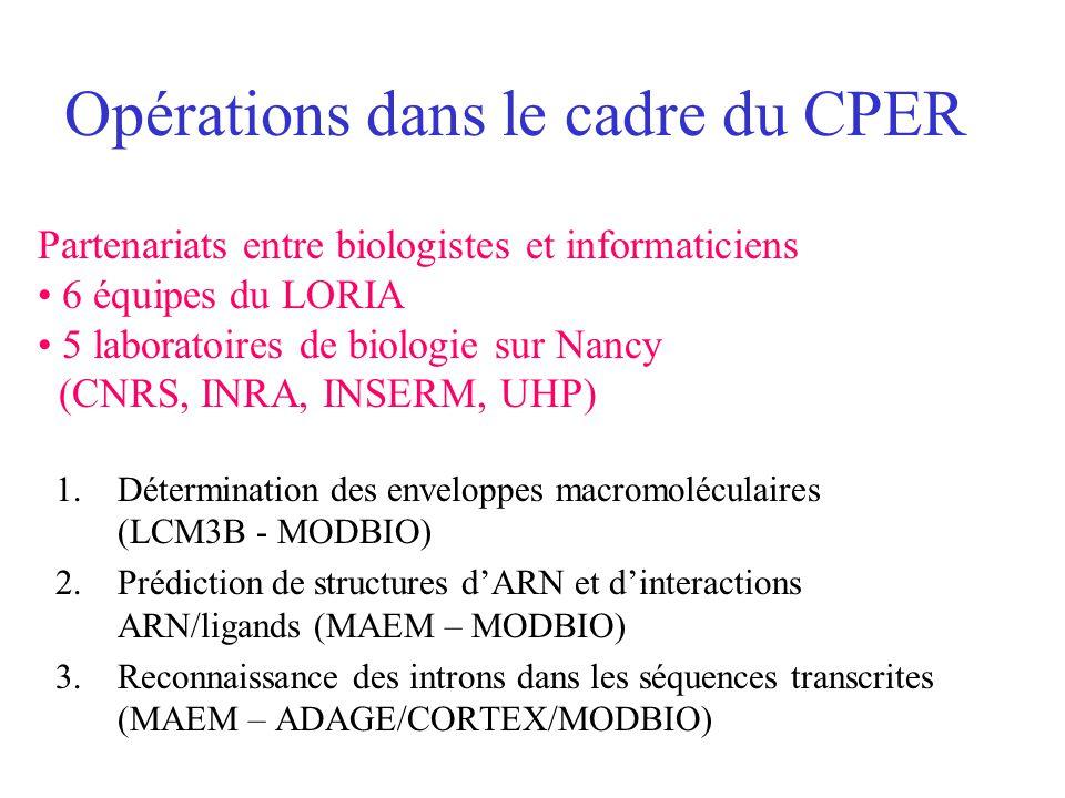 Opérations dans le cadre du CPER 1.Détermination des enveloppes macromoléculaires (LCM3B - MODBIO) 2.Prédiction de structures dARN et dinteractions AR