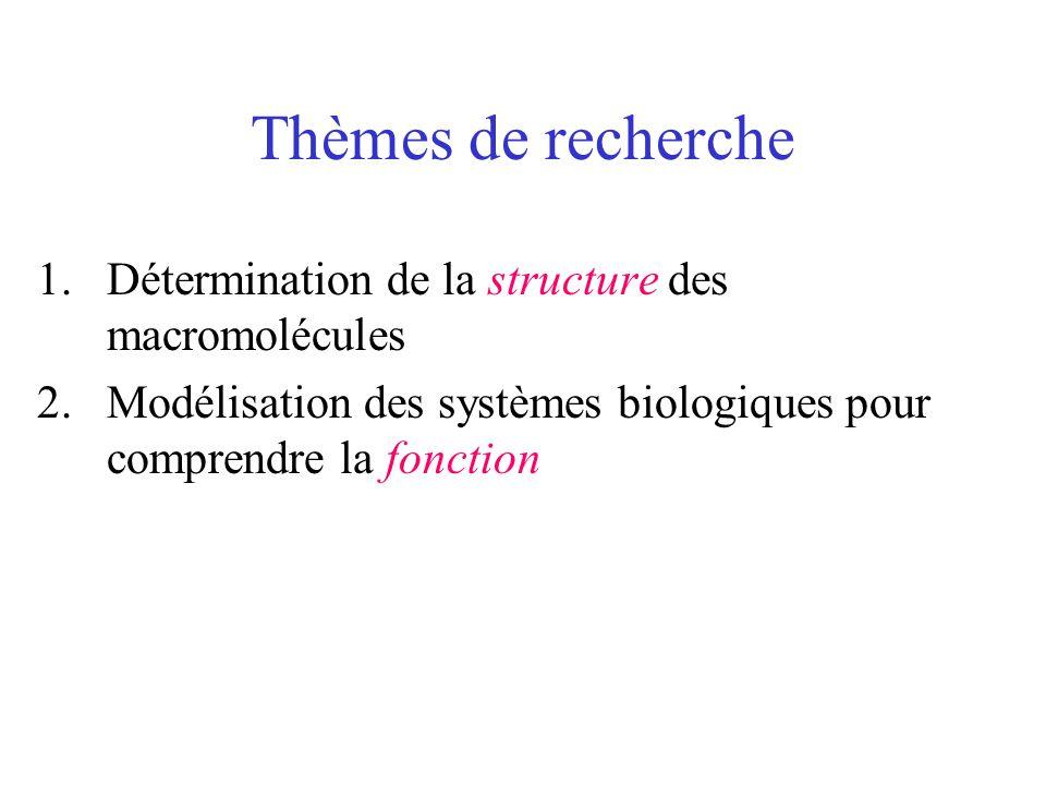 Thèmes de recherche 1.Détermination de la structure des macromolécules 2.Modélisation des systèmes biologiques pour comprendre la fonction